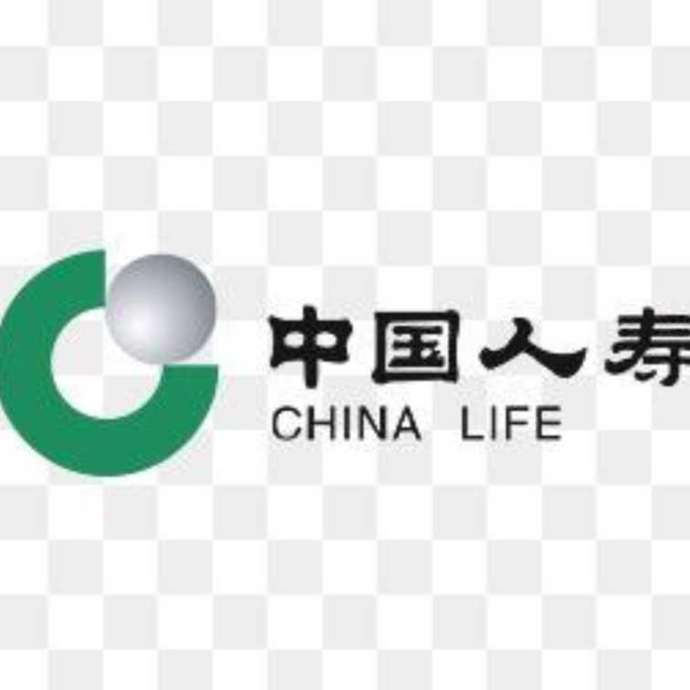 桐城中国人寿支公司