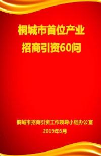 2019桐城市首位产业 招商引资60问