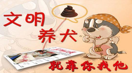 @桐城人,遛狗必须牵狗绳!安庆发布城区文明养犬管理通告-桐城